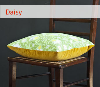 cushion cwt daisy
